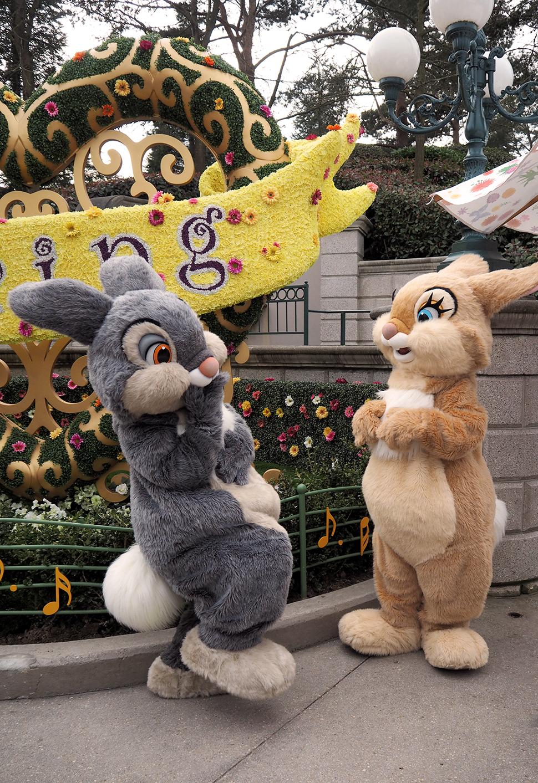 Helloitsvalentine_Disneyland_Spring_32