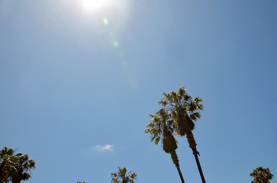 Helloitsvalentine_Carlsbad_Californie_25