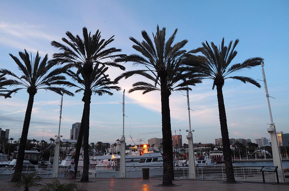 Helloitsvalentine_LosAngeles_Californie_14
