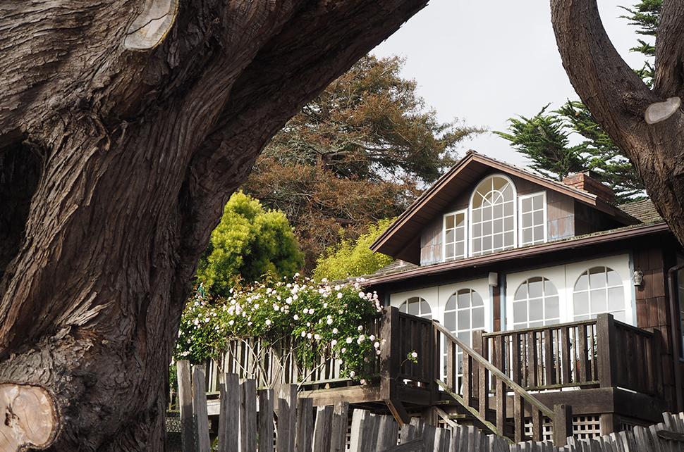 Helloitsvalentine_Monterey_Californie_USA_36
