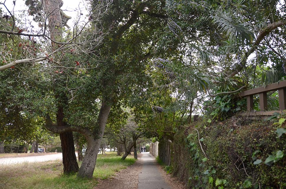Helloitsvalentine_Monterey_Californie_USA_40
