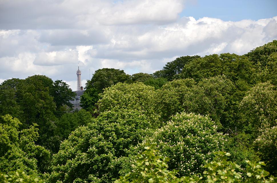 Helloitsvalentine_Paris_42