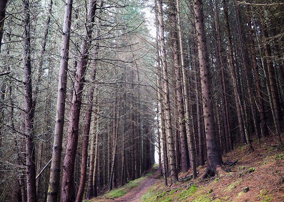 Helloitsvalentine_Ecosse_Inverness_32