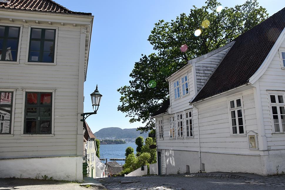 Helloitsvalentine_Norway_Bergen_31