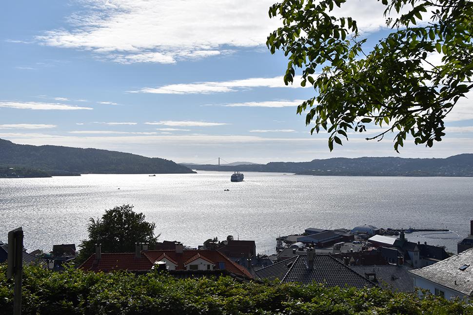 Helloitsvalentine_Norway_Bergen_35