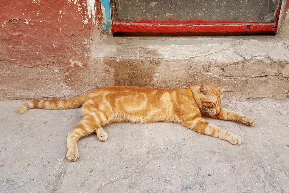 Helloitsvalentine_Cuba_LaHabana_15