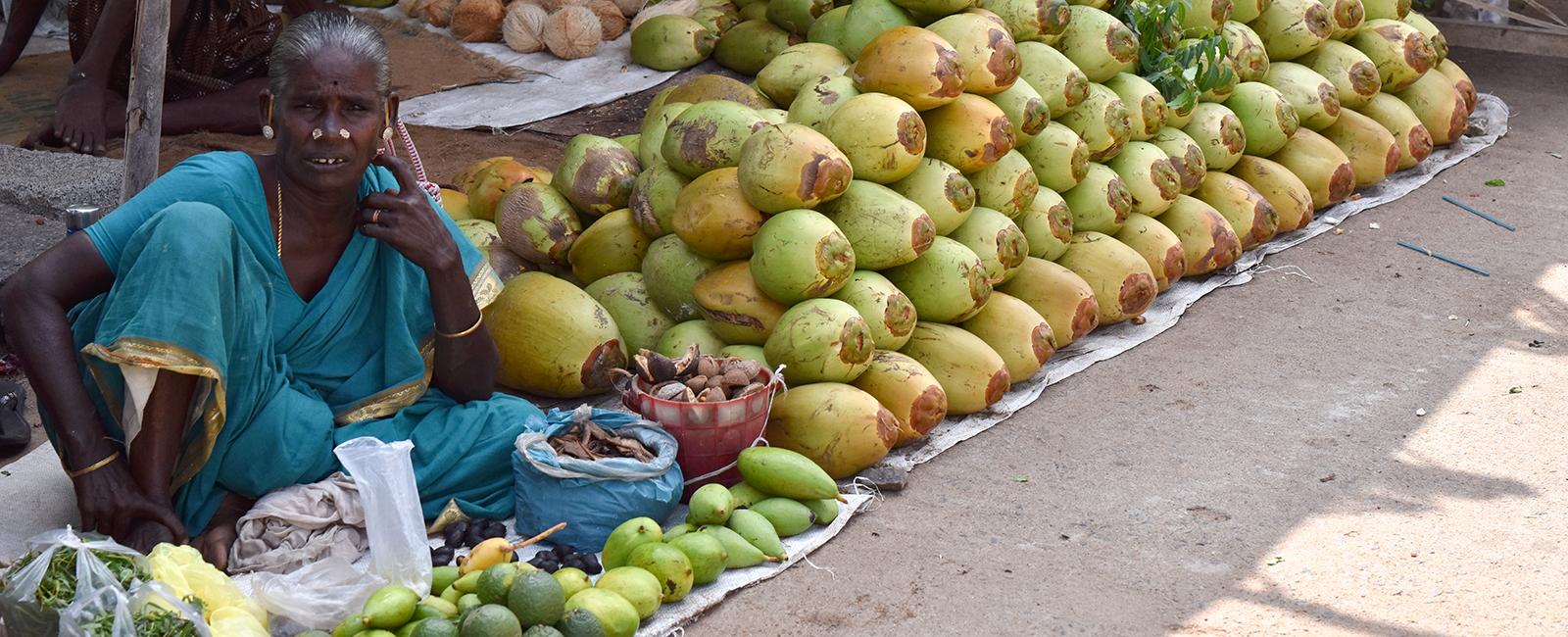 L'Inde, de Chennai à Mahabalipuram